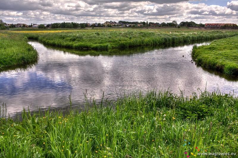 Skrzyżowanie rzek, Wągrowiec